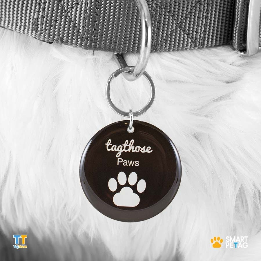 Large Round NFC Pet Tag