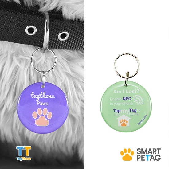 "Smart Pet Tag ""Blue"" Vivi Series 40mm"