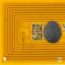 Chip Type