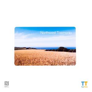 Custom NFC Cards